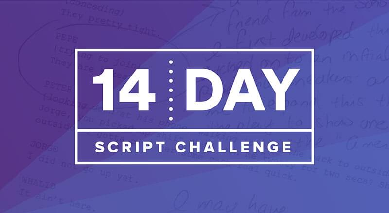 The 14 Day Script Challenge